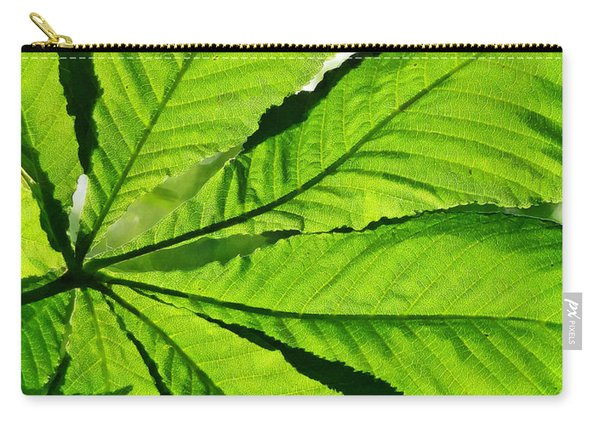 Sun On A Horse Chestnut Leaf Carry-all Pouch