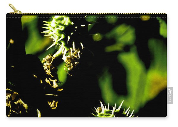 Touched By The Late Afternoon Sun Carry-all Pouch