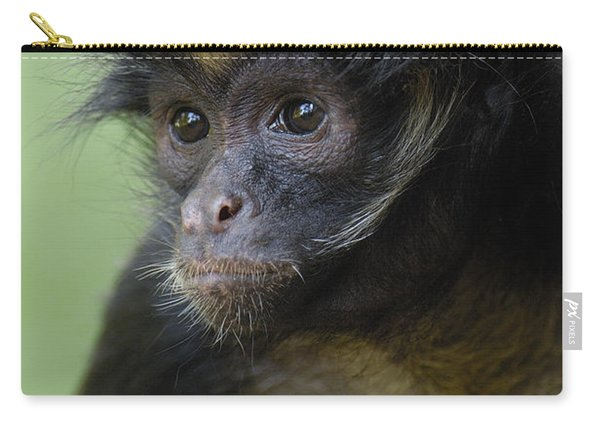 White-bellied Spider Monkey Ateles Carry-all Pouch
