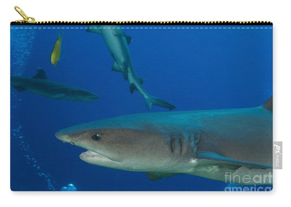Whitetip Reef Shark, Papua New Guinea Carry-all Pouch