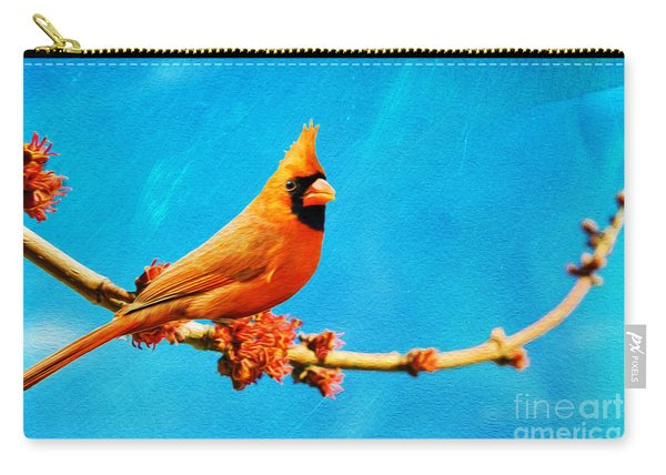 Male Northern Cardinal Perched On Tree Branch Carry-all Pouch
