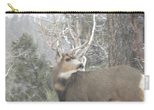 Carry-all Pouch featuring the photograph Buck Front Yard Divide Co by Margarethe Binkley
