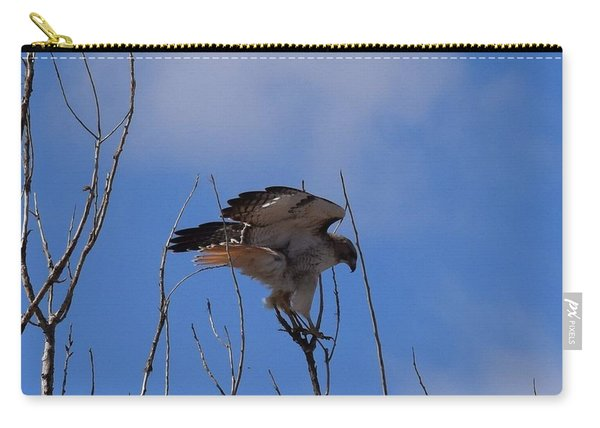 Carry-all Pouch featuring the photograph Red Tail Hawk Female Tower Rd Denver by Margarethe Binkley