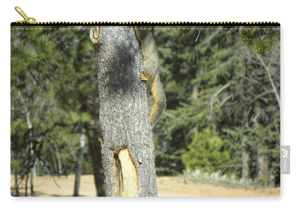 Squirrel Home Divide Co Carry-all Pouch