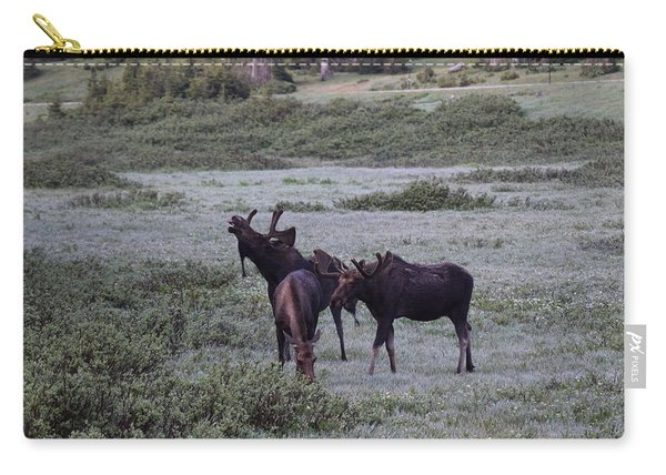 Moose Cameron Pass Co Carry-all Pouch
