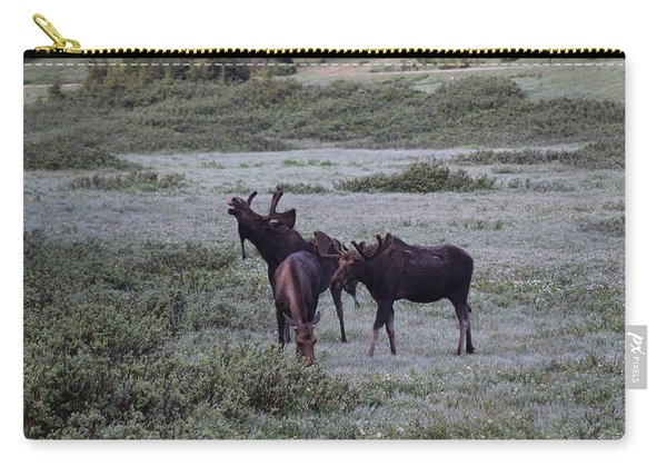 Carry-all Pouch featuring the photograph Moose Cameron Pass Co by Margarethe Binkley