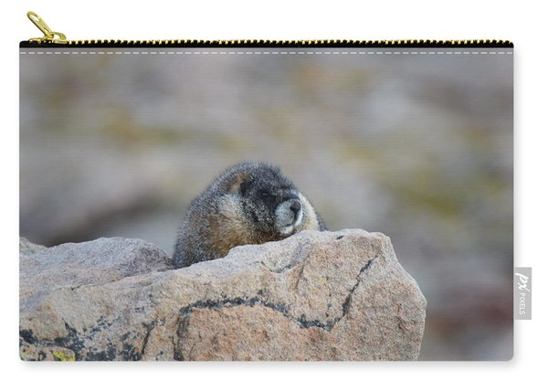 Carry-all Pouch featuring the photograph Marmot Mnt Evans Evergreen Co by Margarethe Binkley