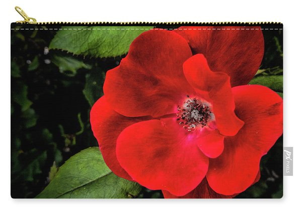 A Knockout Carry-all Pouch