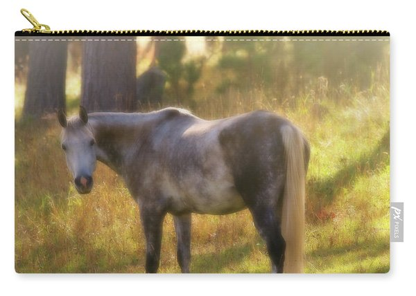 Ambient Grace Carry-all Pouch
