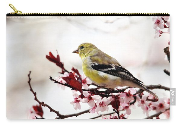 American Goldfinch In Spring Carry-all Pouch