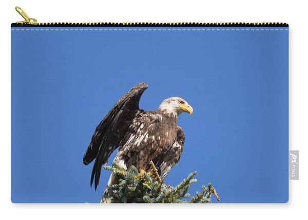 Carry-all Pouch featuring the photograph Bald  Eagle Juvenile Ready To Fly by Margarethe Binkley
