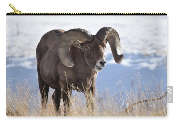 Carry-all Pouch featuring the photograph Big Horn Sheep by Margarethe Binkley