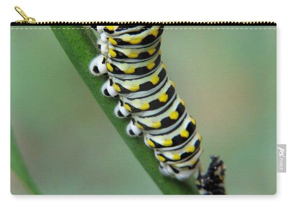 Black Swallowtail Caterpillar Carry-all Pouch
