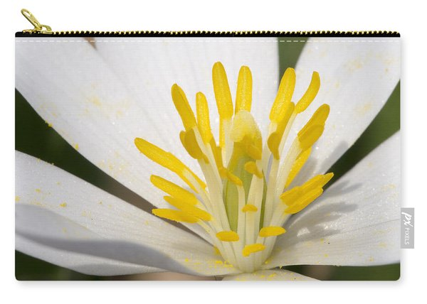 Bloodroot Flowers Carry-all Pouch