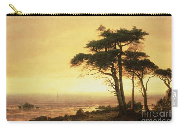 California Coast Carry-all Pouch