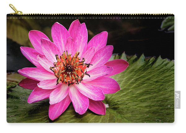 Carroll Creek Water Lily Carry-all Pouch