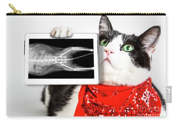 Carry-all Pouch featuring the photograph Cat With X Ray Plate by Benny Marty