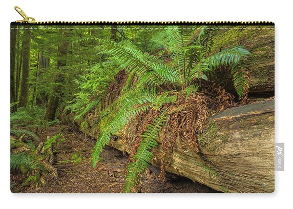 Cathedral Grove Carry-all Pouch