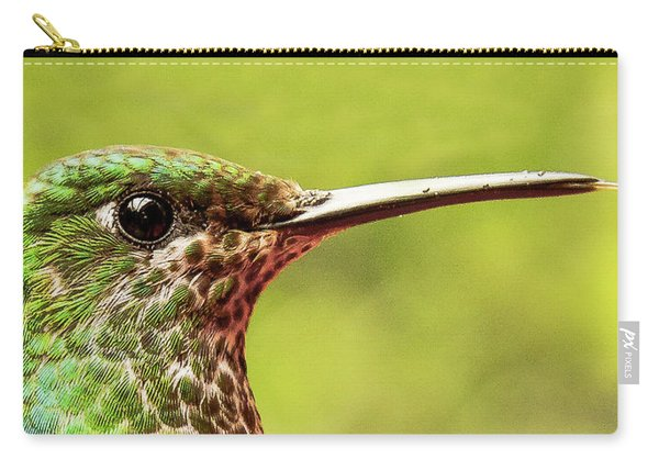 Close-up Of A Rufous-tailed Hummingbird Carry-all Pouch