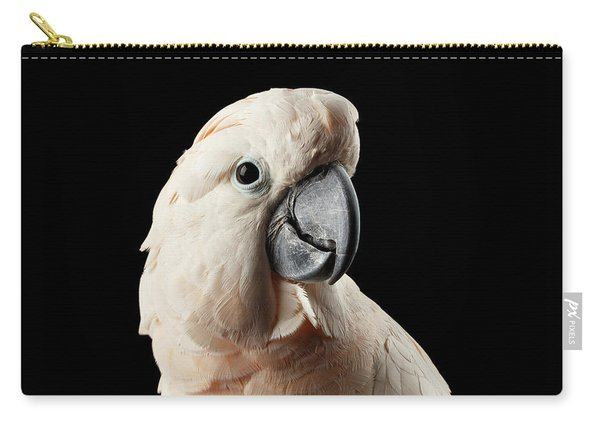 Carry-all Pouch featuring the photograph Closeup Head Of Beautiful Moluccan Cockatoo, Pink Salmon-crested Parrot Isolated On Black Background by Sergey Taran