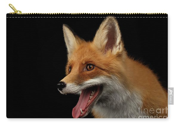 Closeup Portrait Of Smiled Red Fox Isolated On Black  Carry-all Pouch