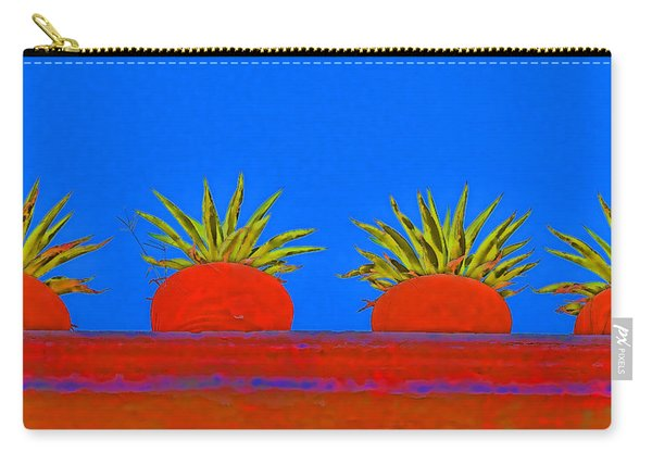 Colorful Potted Plants Mexico Carry-all Pouch