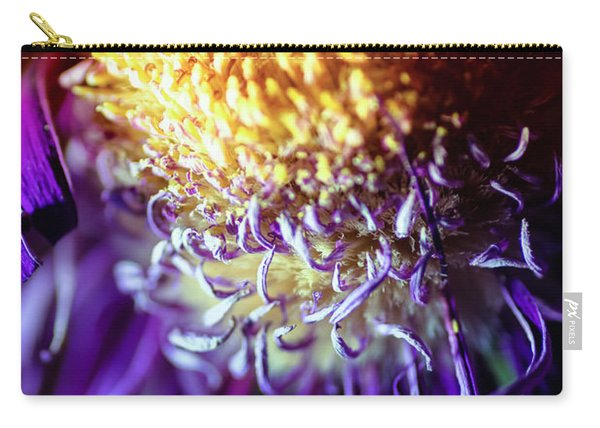 Dying Purple Chrysanthemum Flower Background Carry-all Pouch