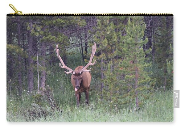 Bull Elk Rocky Mountain Np Co Carry-all Pouch