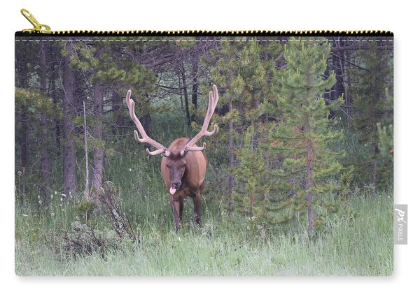 Carry-all Pouch featuring the photograph Bull Elk Rocky Mountain Np Co by Margarethe Binkley
