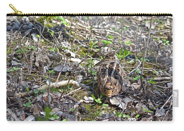 Eye-contact With The American Woodcock Carry-all Pouch