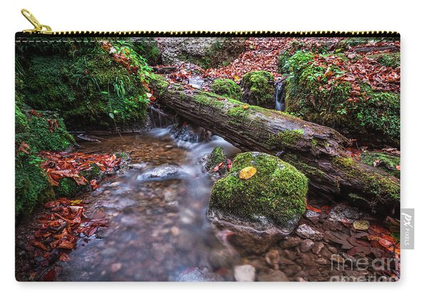 Fall In The Woods Carry-all Pouch