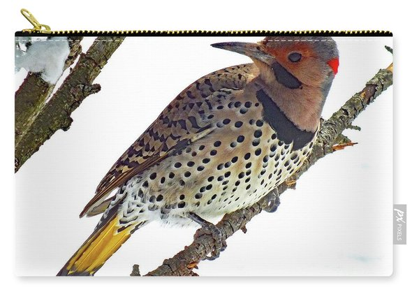 Hello Gorgeous Northern Flicker Carry-all Pouch