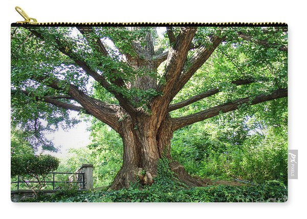 Inwood Ginkgo  Carry-all Pouch