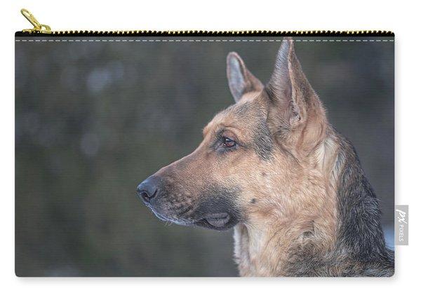 Liesl  Carry-all Pouch