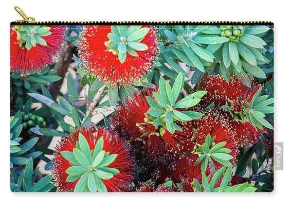 Carry-all Pouch featuring the photograph Little John Dwarf Bottlebrush Bloom by Richard J Thompson