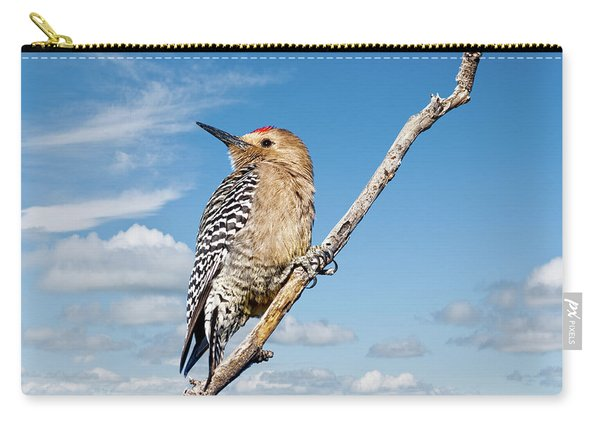 Male Gila Woodpecker Carry-all Pouch