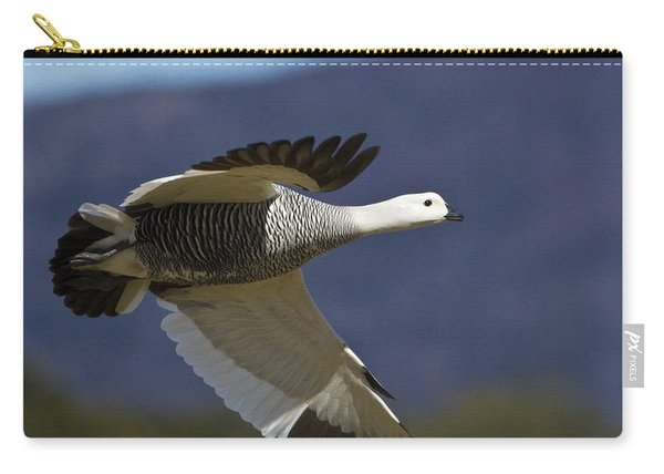 Male Upland Goose Carry-all Pouch
