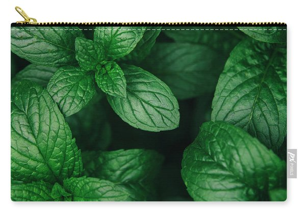 Mint Green Leaves Pattern Background Carry-all Pouch