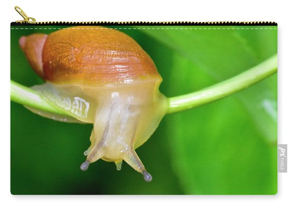 Morning Snail Carry-all Pouch