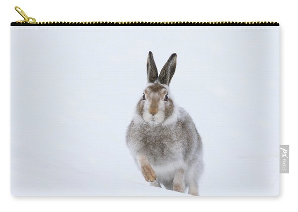 Mountain Hare - Scotland Carry-all Pouch