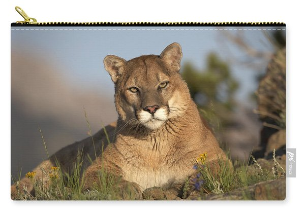 Mountain Lion Portrait North America Carry-all Pouch