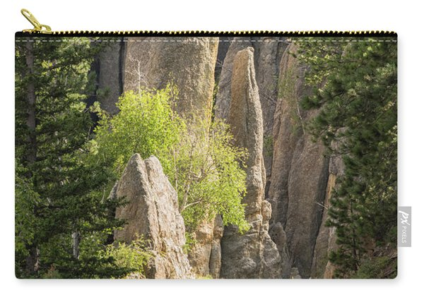 Needles Highway Carry-all Pouch