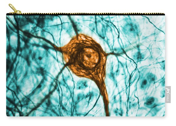 Neuron, Tem Carry-all Pouch