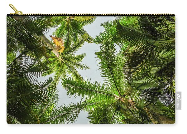 Palm Trees And Blue Sky Carry-all Pouch