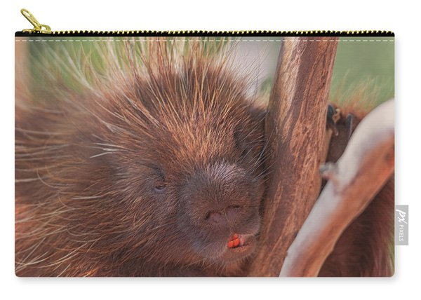 Porcupine  Carry-all Pouch
