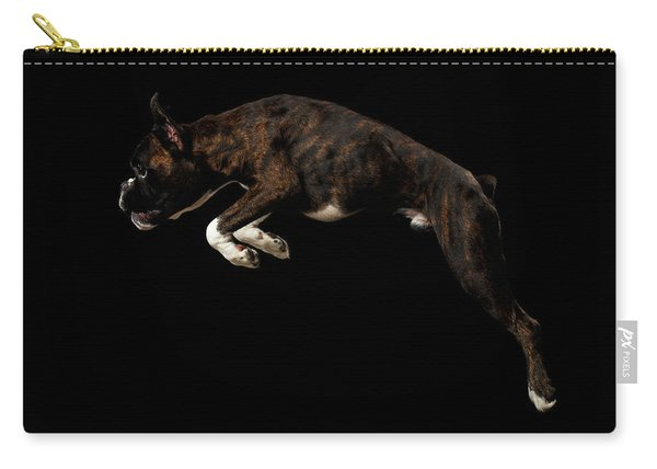 Carry-all Pouch featuring the photograph Purebred Boxer Dog Isolated On Black Background by Sergey Taran