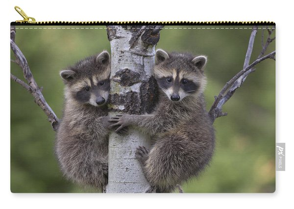 Raccoon Two Babies Climbing Tree North Carry-all Pouch