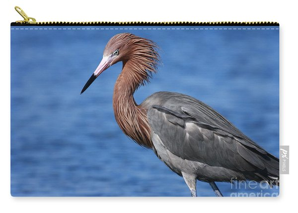 Reddish Egret In Blue Carry-all Pouch