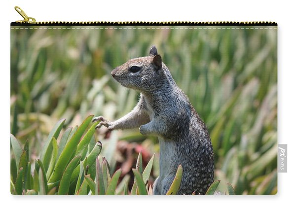 Carry-all Pouch featuring the photograph Rock Squirrel  by Christy Pooschke