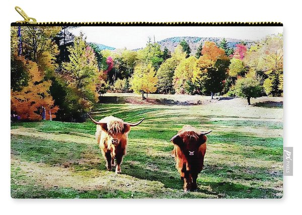 Scottish Highland Cattle - New Hampshire Fall Foliage Carry-all Pouch